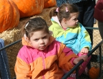 Wagon trip to Pumpkin Patch