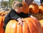 Pumpkin Hug